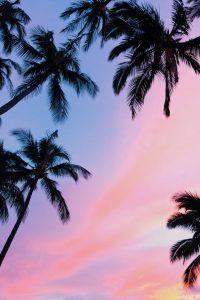 Hawaii Recruiters and Headhunters